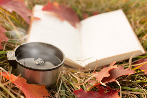 Open book on the ground on autumn leaves