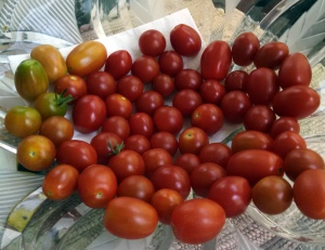 A bowl of red cherry tomatoes