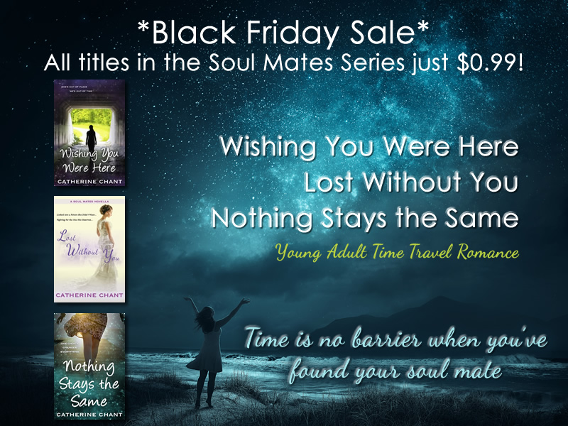 The Soul Mates Series by Catherine Chant 99 cents sale flyer